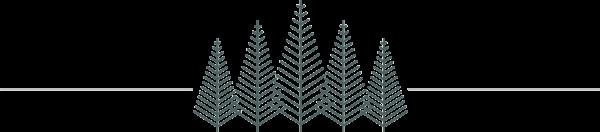 logo-415-marine-parade-divider-line-1200px